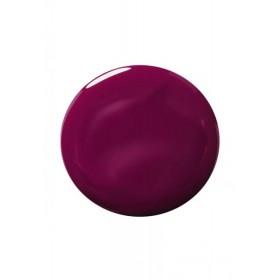 Лак для ногтей «Color & Stay» Faberlic тон Ежевичный
